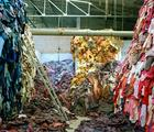 Tim Mitchell, Clothing Recycled, 2005