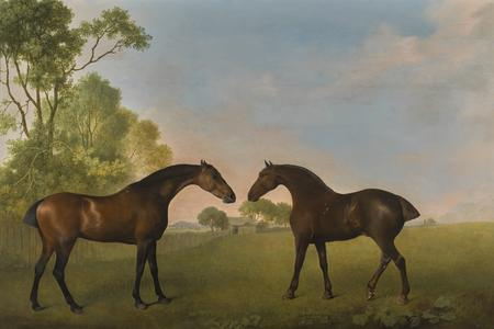 George Stubbs, Two bay hunters in a paddock, 1789