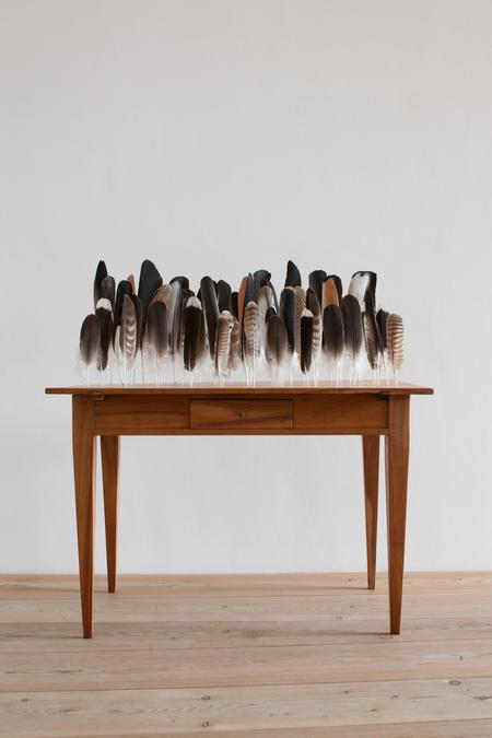 Bethan Huws, Table of Feathers, 2009