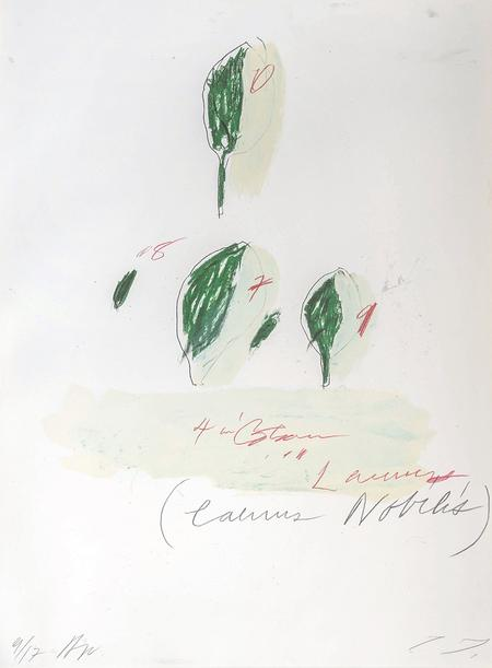 Cy Twombly, Natural History Part II (Some Trees of Italy), 1976