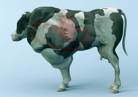 Paul Gong, The cow of tomorrow, 2015